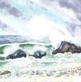 Wild-seas